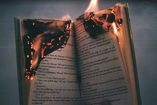 book-burned-burning-fire-paper-Favim.com-330700