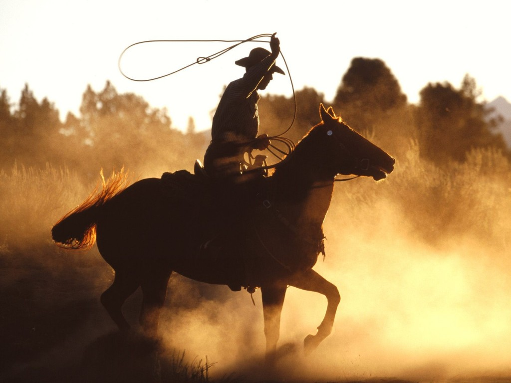 cowboy-with-lasso-wallpapers_11662_1600x1200